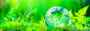 Sustainability: More challenging, more transparent