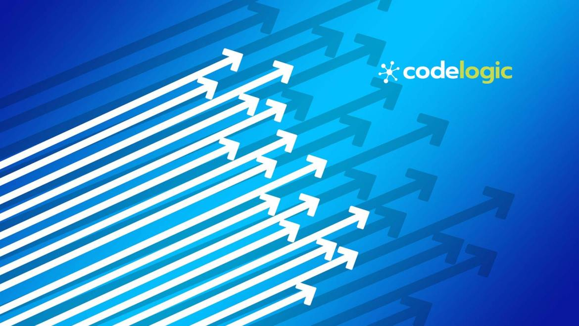 CodeLogic, Inc. Appoints Robert Levy as Chairman of the Board