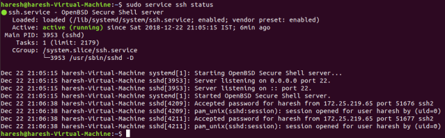 Check status of SSH service
