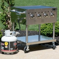 """Backyard Pro C3H830 30"""" Stainless Steel Outdoor Grill"""