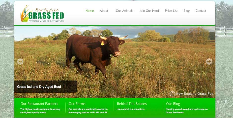 rhode island web design