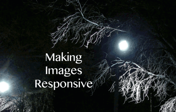 Making Images Responsive photo by Virginia DeBolt