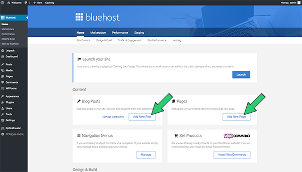 create-page-and-posts-bluehost
