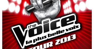 TheVoice Tour2013 Visuel 40X60