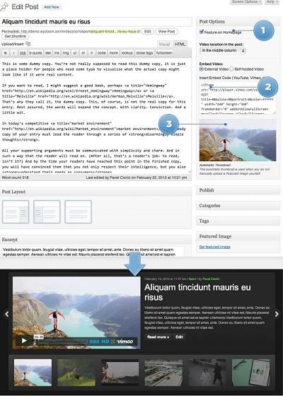 Tema Wordpress Para Crear VideoBlogs y VideoMagazines » webtralia.com