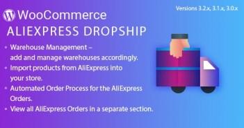 aliexpress dropshipping wordpress plugin