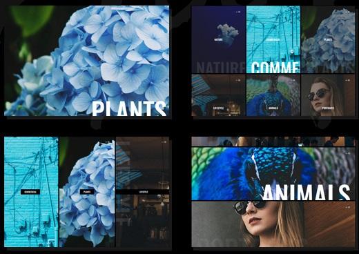 Plantillas Wordpress Para Artistas - DeaMercy | HAAR » webtralia.com