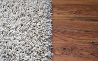 The Pros And Cons Of Carpet vs Hardwood Floors | We Build ...
