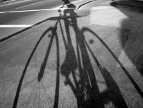 « C'est comme le vélo, ça ne s'oublie pas ! »