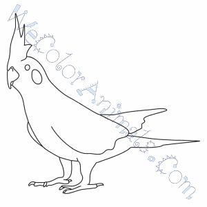 Cockatiel Coloring Pages