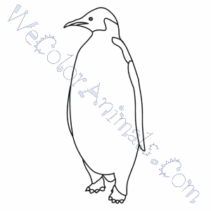 Emperor Penguin Coloring Pages