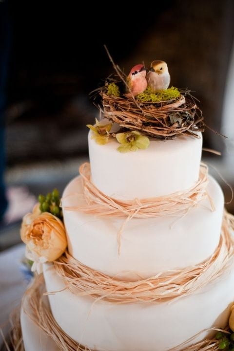 bird themed cake