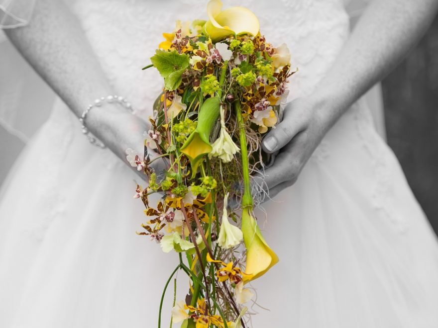 Fleur de Lilie  Eventfloristik aus Meisterhand  Weddchecker