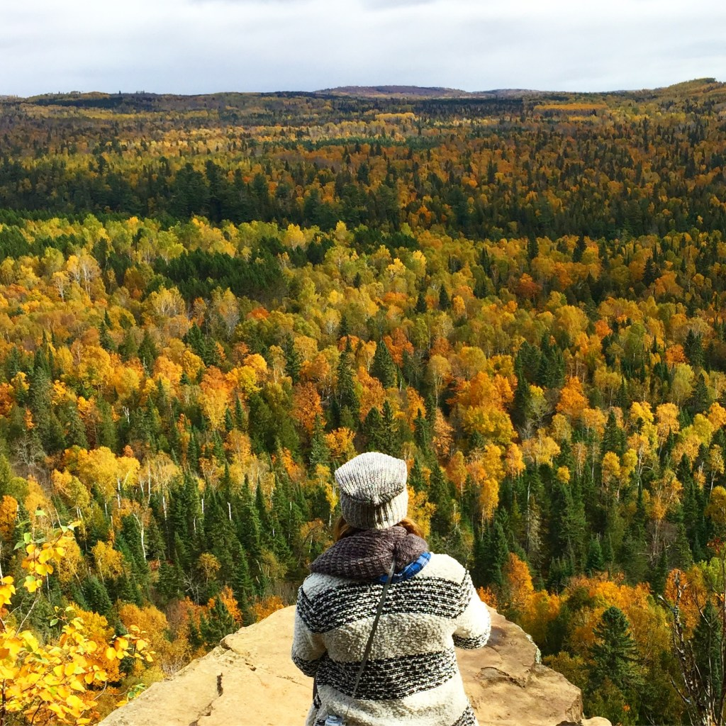 where to see fall color in minneapolis