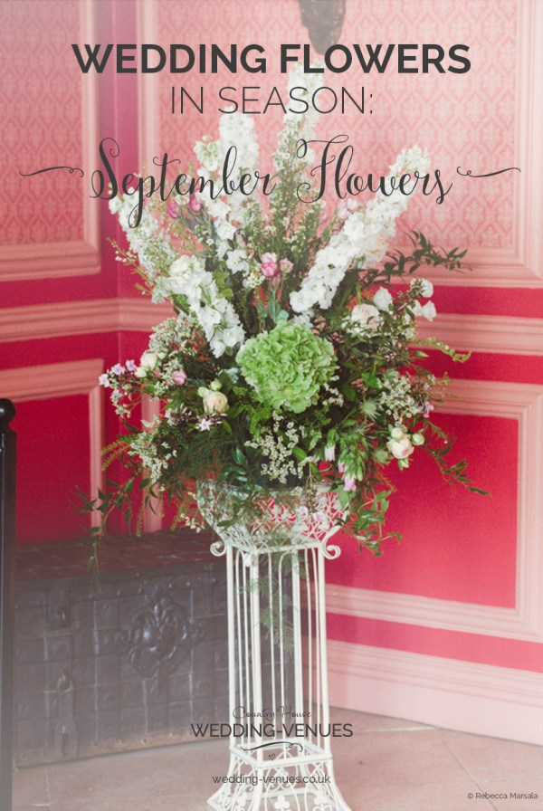 September Wedding Themes Ideas For Weddings Exploring Mars