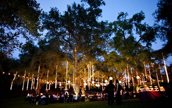 Wedding Dcor Twinkle Lights  WeddingElation