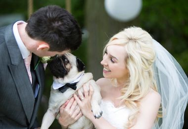 Pets At Weddings: How To Dress Your Four-Legged Friends