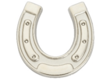 Horseshoe pin badge