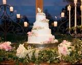 Wedding Cake displays