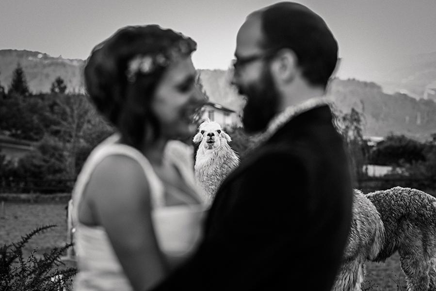 Wedding Photographer Spain, Oier Aso (ARTEFOTO)