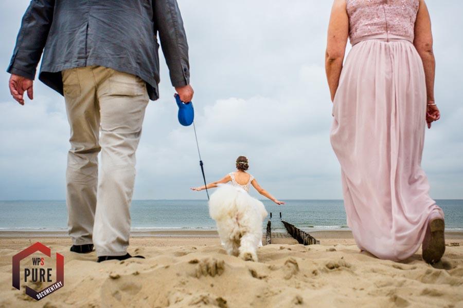 wedding photgrapher steven herrschaft