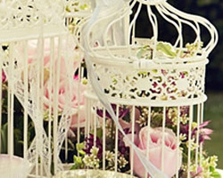 wedding chair covers hire prices pink metal weddings events cover venue dressing at your event