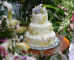Determine the wedding budget.
