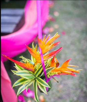 fuschia & orange wedding aisle decor