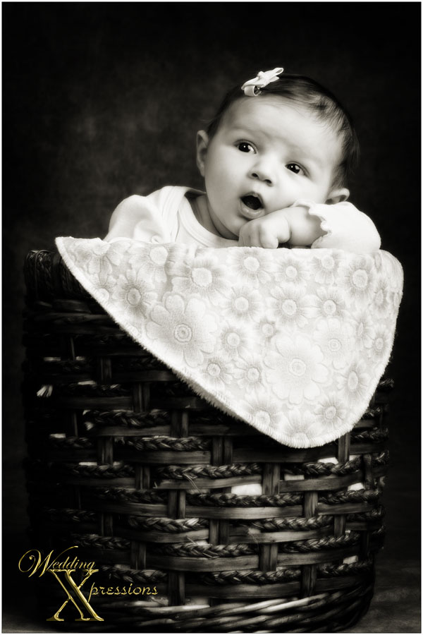 baby in basket in black and white