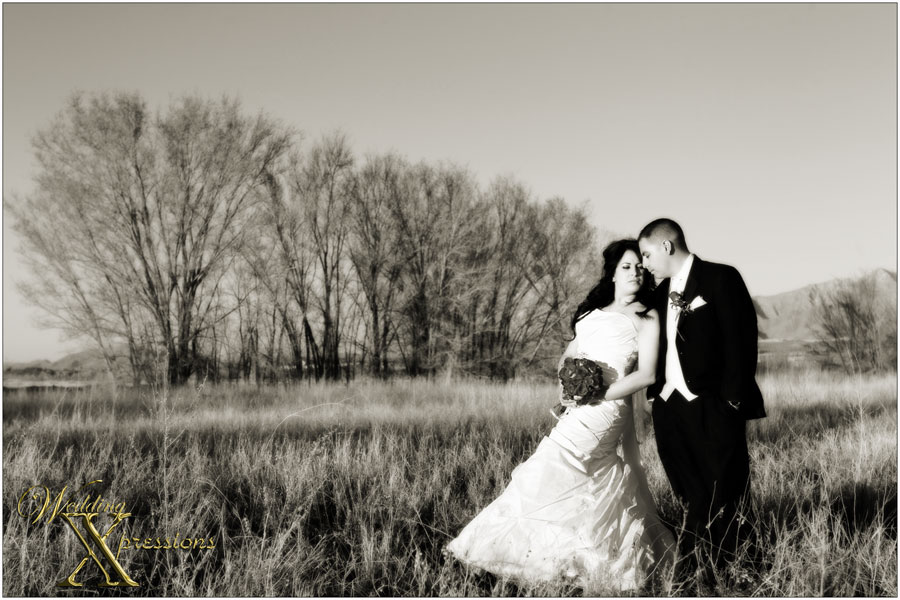Wedding Xpressions Photography