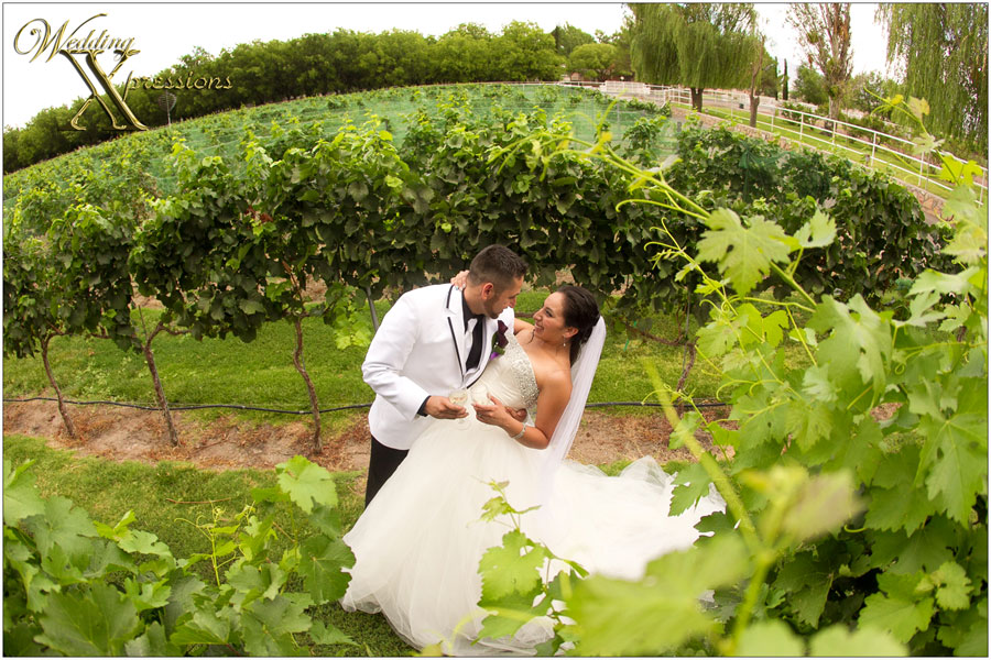 wedding photography at Zin Valle winery