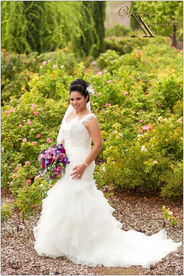 bride in a rose garden in El Paso TX
