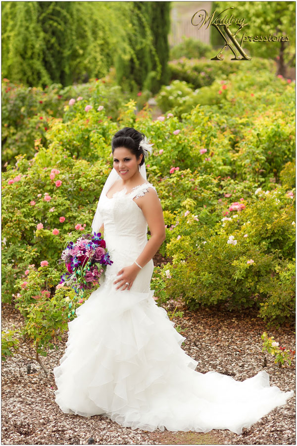 bride in a rose garden in El Paso TX