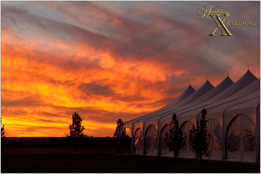 Grace Gardens after sunset