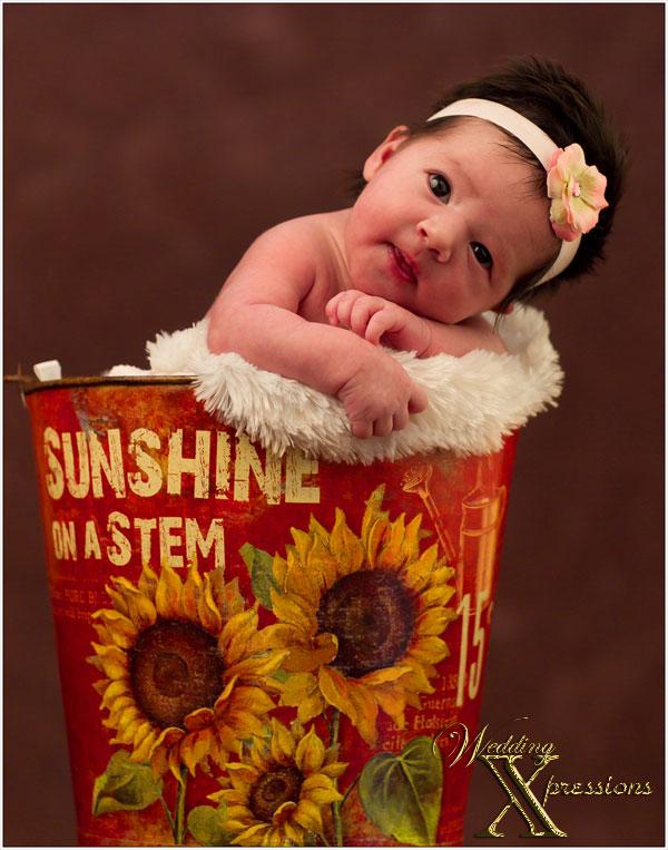 Ava Newborn Portraits