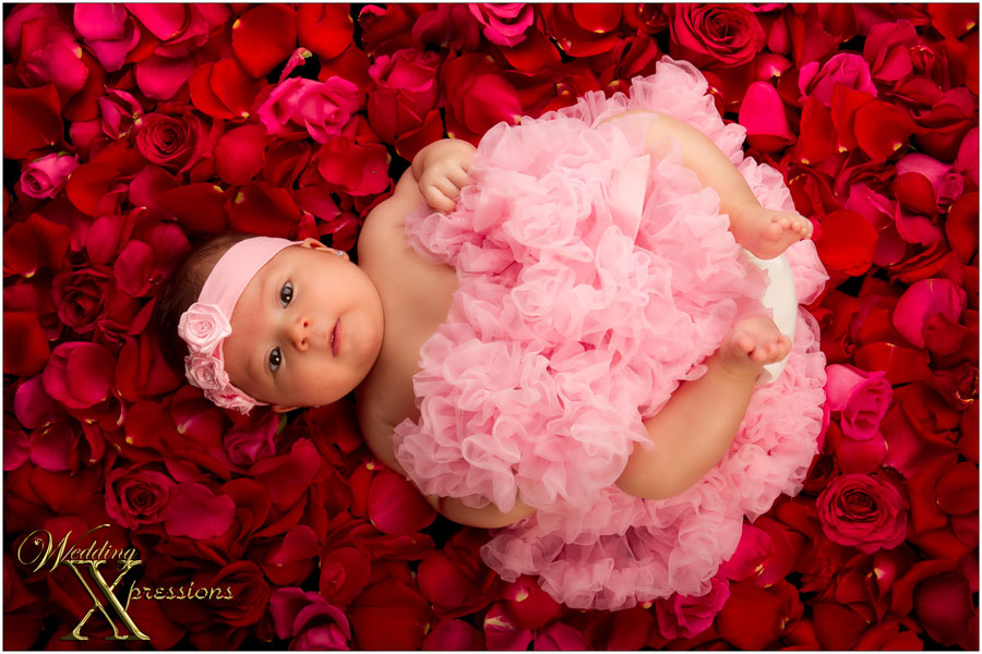 baby in bed of roses