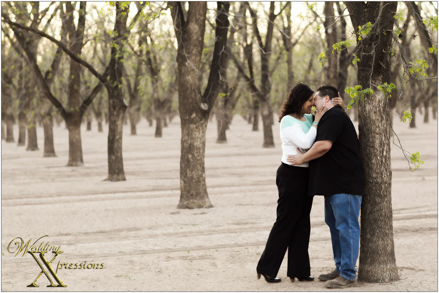 engagement session in Pecan orchard