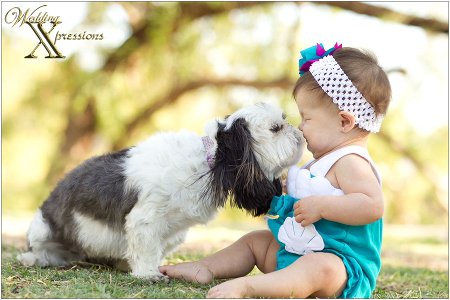 dog licking baby