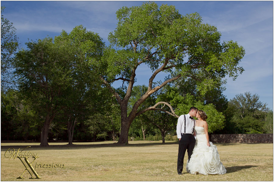 couple in front of large tree