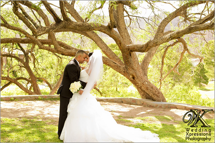 Nairober & Ivonne's wedding