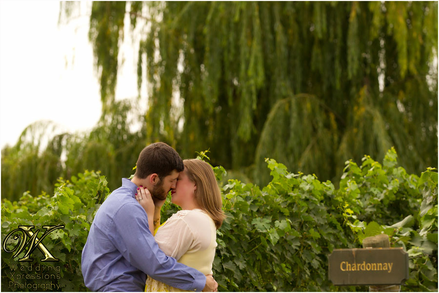 Engagement session at winery