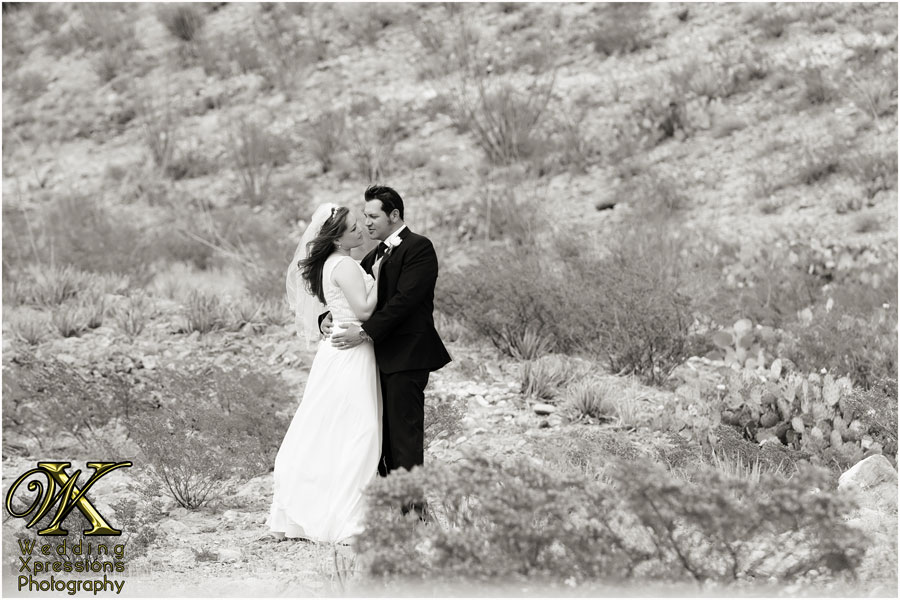Mark & Nicole's wedding in El Paso