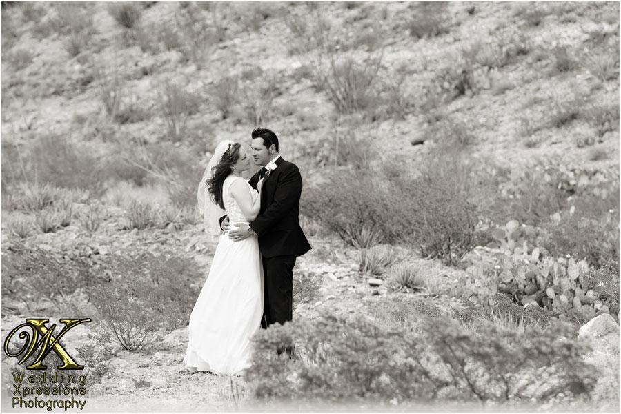 Mark & Nicole's wedding in El Paso