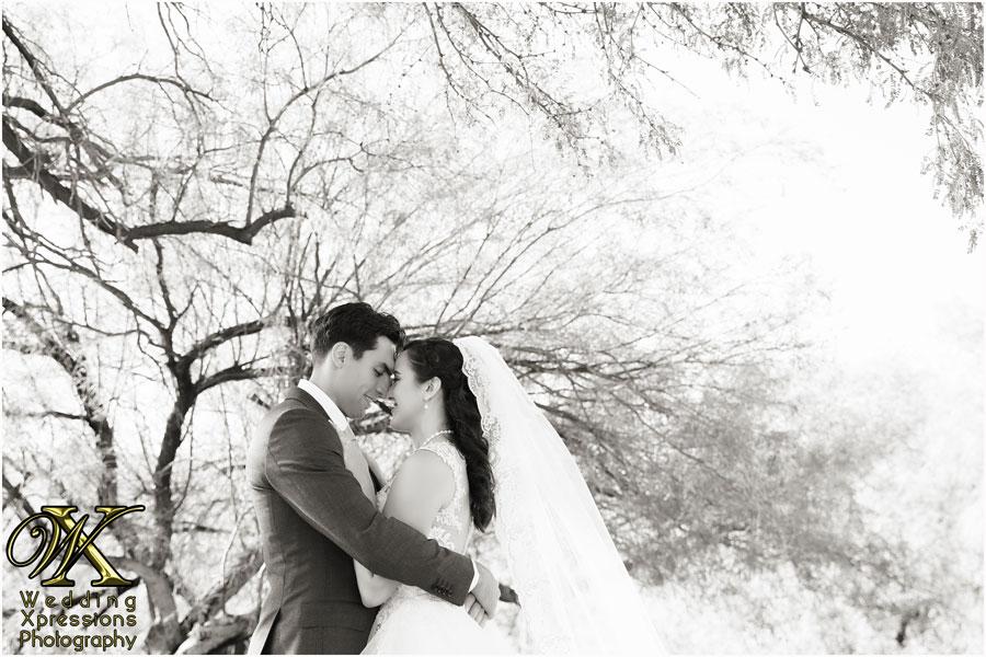 Stephanie and Jared's wedding photography