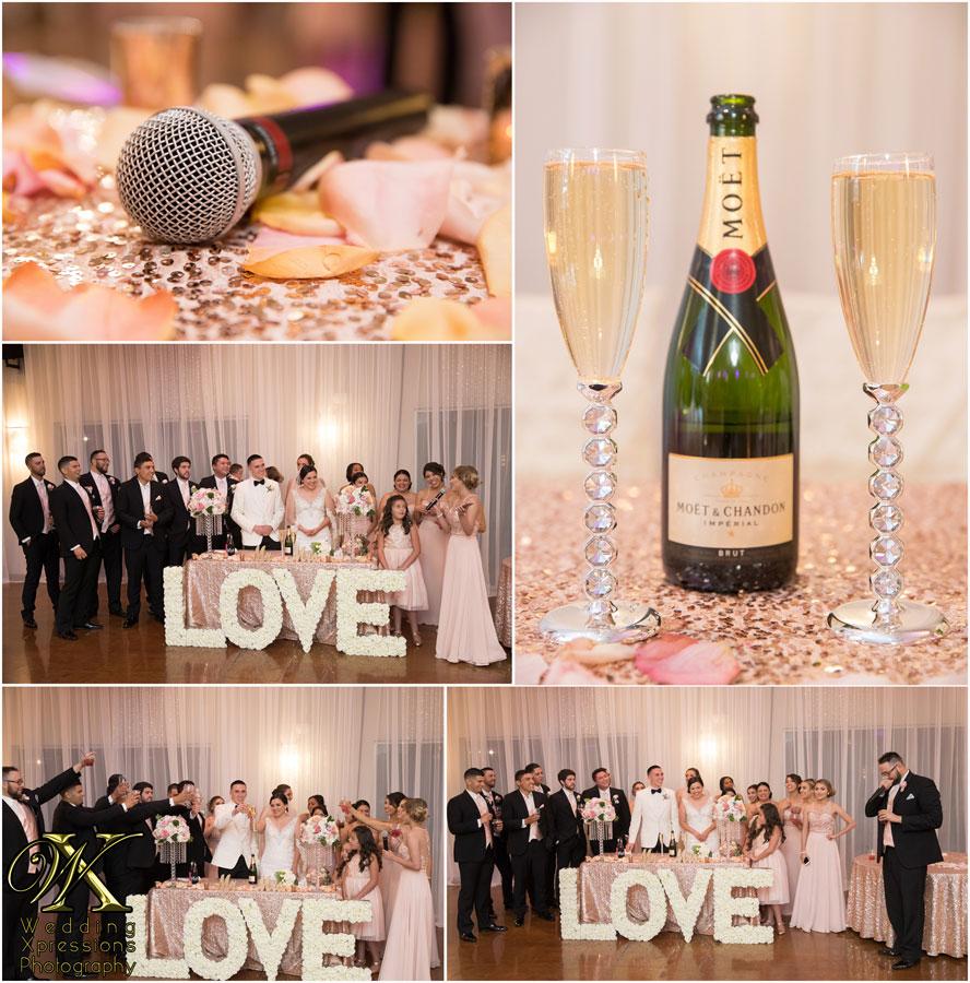 wedding toast at Grace Gardens wedding