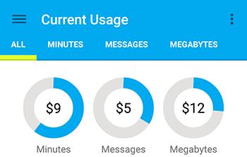 Ting App Usage
