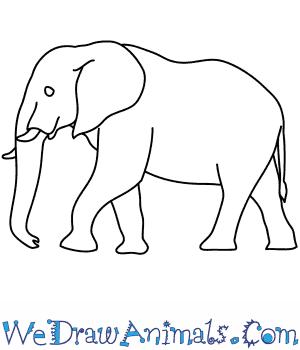 Turtle Cartoon Characters. Diagrams. Wiring Diagram Images