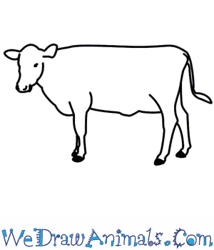labelled diagram of a cow hobbes and locke venn how to draw