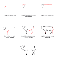Labelled Diagram Of A Cow Basic Wiring How To Draw Quick Step By Tutorial