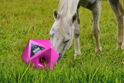 snoepjesbal paard